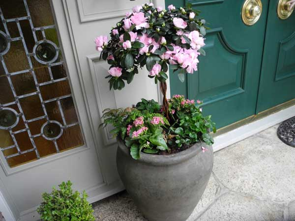 Bright two-tiered entryway container